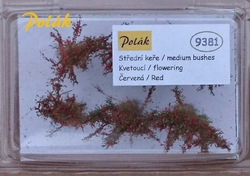 Medium bushes - flowering - Red 6pcs